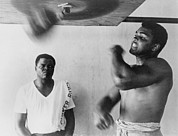 Boxing  Framed Prints - Muhammad Ali, Works Out On Light Bag Framed Print by Everett