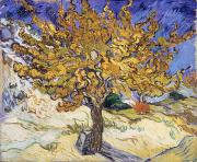 Tree Paintings - Mulberry Tree by Vincent Van Gogh