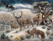 Cottonwood Paintings - Mule Deer in Winter by Dawn Senior-Trask