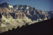 Grand Canyon Scenes Prints - Mules Carry Visitors To The Grand Print by W.E. Garrett