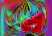 Origional Prints - Multi Color Floral Abstract Print by Linda Phelps