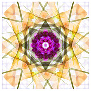 Mike Mcglothlen Prints - Multi Flower Abstract Print by Mike McGlothlen