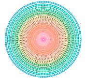 Lines Originals - Multicolor Circle by Atiketta Sangasaeng