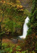 Columbia River Gorge Prints - Multnomah Autumn Print by Mike  Dawson