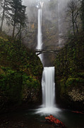 Vertical Tapestries Textiles Posters - Multnomah Fall Poster by Helminadia