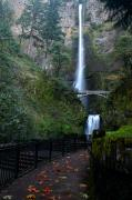 Pour Prints - Multnomah Falls - Fall Begins Print by Todd Kreuter