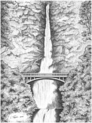 Landscape. Scenic Drawings Framed Prints - Multnomah Falls Framed Print by Lawrence Tripoli
