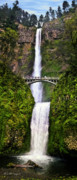 Scenery Digital Art Originals - Multnomah Falls by M S McKenzie