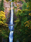 Autumn Landscape Pyrography Prints - Multnomah Falls Print by Nick Korstad
