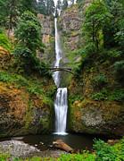 Multnomah Falls Oregon Print by Sam Amato