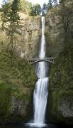 High Falls Gorge Prints - Multnomah Falls Print by Peter French - Printscapes