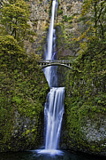 Jon Mack - Multnomah Falls Portrait