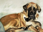 Mastiff Dog Paintings - Murphy and Cody by Eileen Hale