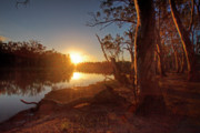 Murray Prints - Murray River Sunset Print by Mark Richards