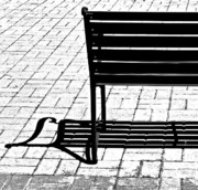 Bench Metal Prints - Muscial Bench Metal Print by Rebecca Cozart