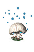 Blue Mushrooms Posters - Mushroom dreams Poster by Carol and Mike Werner