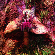 Fantasy Photos - Mushroom Fairy by DiDi Higginbotham