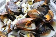 Mussels Photos - Mussels in Wine Sauce by Angie Wingerd