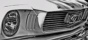 TONY GRIDER - Mustang Grill