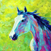 Foal Paintings - Mustang by Marion Rose