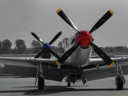 North American P51 Mustang Photos - Mustangs At Rest by Jim Harris