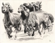 Cowboy Pencil Drawing Posters - Mustangs of Las Colinas Poster by David Clemons