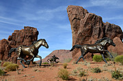 Mustangs Metal Prints - Mustangs On The Run Metal Print by Bob Christopher