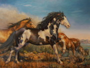 Pinto Paintings - Mustangs On the Run by Kerry Nelson