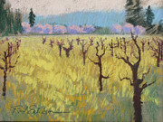 Napa Valley Vineyard Pastels Posters - Mustard Vines Poster by Reif Erickson