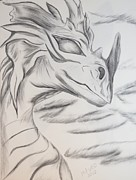 Charcoals Drawings Framed Prints - My Dragon Framed Print by Maria Urso
