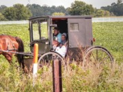 Amish Family Photos - My Favorite by David Bearden