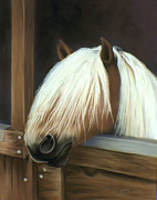 Blond Mane Framed Prints - My favorite horse Framed Print by Sharon Allen