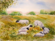 Vicki  Housel - My Flock of Sheep