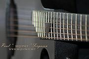 All - My Guitar  5 2010 by Paul SEQUENCE Ferguson             sequence dot net