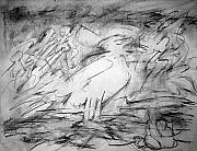 Seagull Drawings Originals - My Gull by Jerry Engelbach