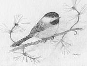 Cynthia  Lanka - My Little Chickadee