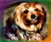 Lifestory Originals - My Maggie by Kathy Tarochione