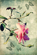 Floral Mixed Media Metal Prints - My rose Metal Print by Angela Doelling AD DESIGN Photo and PhotoArt