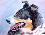 Heeler Paintings - My Shadow by Carolyn Bishop