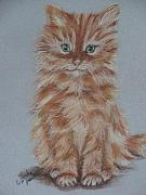 Cute Cat Pastels Prints - My Tia Baby Print by Sandra Valentini