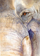 Sri Lankan Artist Paintings - My Tiny Eye - Asian Tusker by Sasitha Weerasinghe