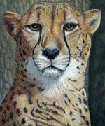 Cheetah Pastels Framed Prints - MY Tree Framed Print by Beverly Fuqua
