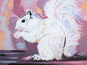 Nuts Paintings - My White Squirrel by Phyllis Kaltenbach