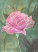 Bud Pastels Framed Prints - My Wild Irish Rose Framed Print by Carole Clark