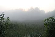 Richard De Wolfe - Mysterious Dawn