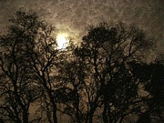 Ginger Denning - Mysterious Moon