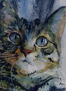 Tabby Paintings - Mystery Tabby by Paul Lovering