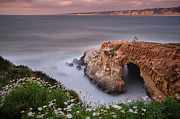 La Jolla Framed Prints - Mystical Cave Framed Print by Larry Marshall