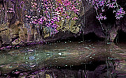 Mystical Art Metal Prints - Mystical Pond Metal Print by Linda Sannuti