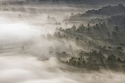 Mountain Photographs Posters - Mystical Valley Poster by Rob Travis